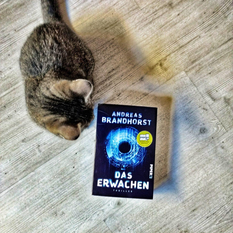 Das Erwachen – Andreas Brandhorst